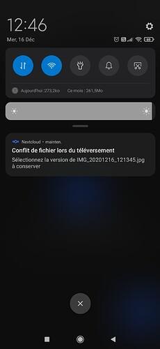 Screenshot_2020-12-16-12-46-43-445_com.nextcloud.client